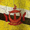 Grunge Brunei Flag by Steve Ball