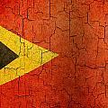 Grunge East Timor Flag by Steve Ball