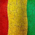 Grunge Guinea Flag by Steve Ball