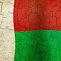 Grunge Madagascar Flag by Steve Ball