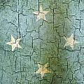 Grunge Micronesia Flag by Steve Ball