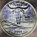 Grunge Montana Coin  by Danielle  Parent