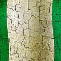 Grunge Nigeria Flag by Steve Ball