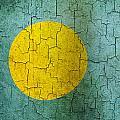 Grunge Palau Flag by Steve Ball
