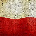 Grunge Poland Flag by Steve Ball