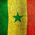 Grunge Senegal Flag by Steve Ball