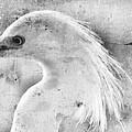 Grunge Snowy  by Eagle  Finegan