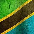 Grunge Tanzania Flag by Steve Ball