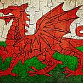Grunge Wales Flag by Steve Ball