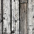 Grungy Old Wood Background by Sylvie Bouchard