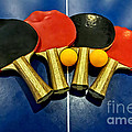 Grungy Ping-pong Bats Table Tennis Paddles Rackets by Beverly Claire Kaiya