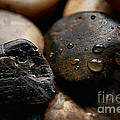 Rocks And Drops by Margie Chapman
