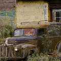 Grungy Vintage Ford Panel Truck by Liane Wright