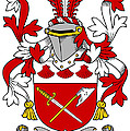 Grymes Coat Of Arms Irish by Heraldry