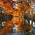 Guadalupe River, Texas Hill Country by Larry Ditto