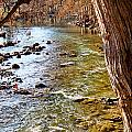 Guadalupe River View by Gary Richards