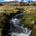 Guallatiri Volcano And Mountain Stream by James Brunker