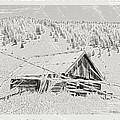 Guarding Grandpa's Cabin by Susan Kinney