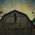 Silo Guard by Gothicrow Images
