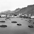 Guaymas Harbor by Underwood Archives