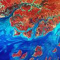 Guinea Bissau by USGS Landsat