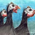 Guinea Hen Rooster Trio Farm Ranch Animal Art by Cathy Peek