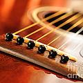Guitar Bridge by Elena Elisseeva