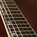 Guitar Neck by Karol Livote
