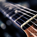 Guitar Strings by Stelios Kleanthous