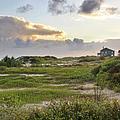 Gulf Coast Galveston Tx by Christine Till