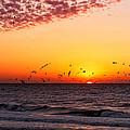 Gulf Sunset by Lars Lentz