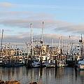Gulfport Marine by Raymond Poynor