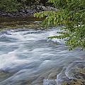Gull River Rapids by Ralph Brunner