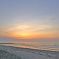 Gulls At Sunrise by Ellen Paull