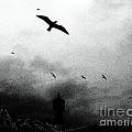 Gulls Over Towers by Callan Art