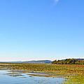 Guntersville Lake by Verana Stark