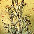 Gustav's Tree by RC DeWinter