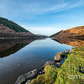 Gwydyr Forest Lake by Adrian Evans