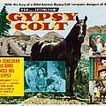 Gypsy Colt, Us Lobbycard, Center by Everett