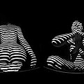 H Stripe Series One Sensual Zebra Woman Abstract Black White Nude 1 To 3 Ratio by Chris Maher
