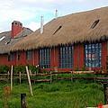 Hacienda El Porvenir by Laurel Talabere