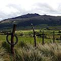 Hacienda El Porvenir Ranch View by Kurt Van Wagner