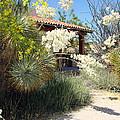 Hacienda by Linda Cox