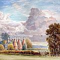 Hadlow Stand Of Oasts by Steve Crisp