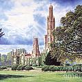 Hadlow Tower by Steve Crisp
