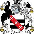 Hadsor Coat Of Arms Irish by Heraldry