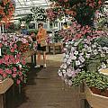 Haefner's Garden Center Impatiens by Don  Langeneckert