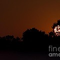 Hagadorn Sun Three by Joseph Yarbrough