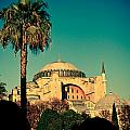 Hagia Sophia View With Palm by Raimond Klavins