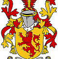 Hale Coat Of Arms Irish by Heraldry